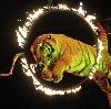 Цирки в Железноводске